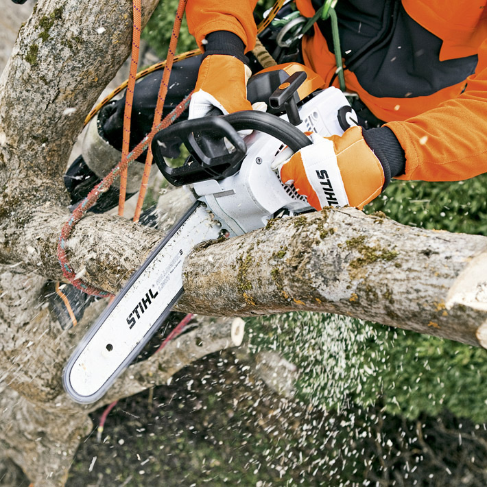 ms 201 t powerful light arborist chainsaw. Black Bedroom Furniture Sets. Home Design Ideas
