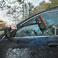Brosse de lavage automobile