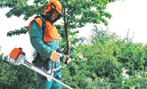 Travaux paysagers et forestiers