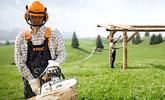Utilisation soutenue, grands domaines, agriculture