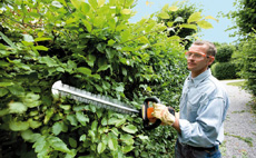 Expert advice on hedge trimming