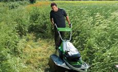 Tosaerba per mulching e erba alta