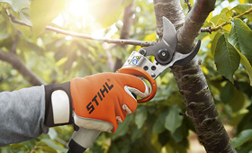 Cordless power systems pruning shears