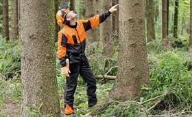 Erdészeti munkaruha ECONOMY PLUS