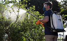 Pulverizadores para jardinagem
