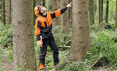 STIHL ECONOMY PLUS: The cost effective choice