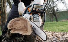 Robuste, pentru multiple utilizări- Motoferăstraie cu motor pe benzină pentru peisagistică şi pomicultură