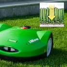 Mulching mower - for a greener lawn