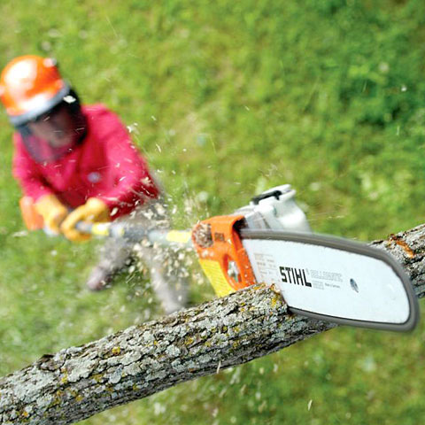 Ht 103 Professional Pole Pruner With Telescopic Shaft