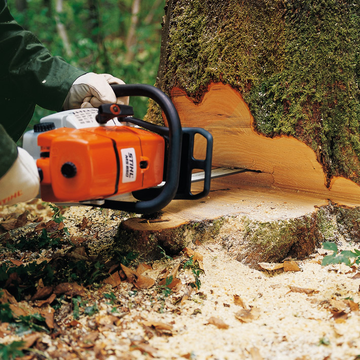 51cd4275f1c MS 660 · MS 660. Professional chainsaw ...