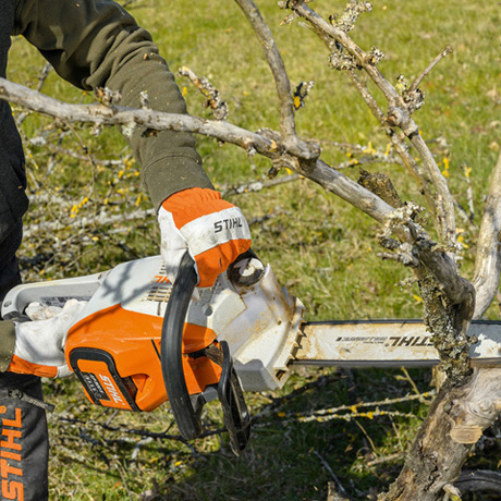 MSA 220 C-B Chainsaw promotional set and tool only