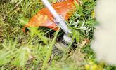 Grün- und Forstflächen pflegen