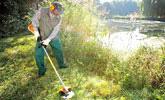 Paisajismo y mantenimiento de zonas verdes