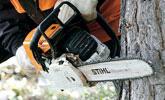 Ścinka i okrzesywanie drewna małowymiarowego