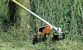 道沿い・公園周りの草刈り作業