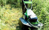 Powierzchnie porośnięte wysoką trawą