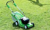 Trawniki o powierzchni do 1000 m²