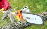 Mantenimiento de árboles y frutales