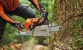 Holz sägen