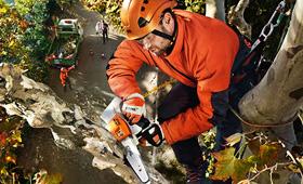 Kettingzagen voor boomverzorging