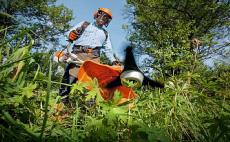 Kosy spalinowe do dużych terenów zielonych