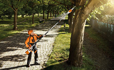 PRO Battery Electric Telescopic Pole Pruner