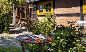 Sekatör, grensåg och andra trädgårdsredskap