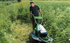 Maşină de tuns iarba speciale pentru vegetatie inalta sau terenuri dificile
