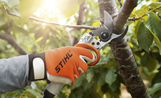 ASA 85 cordless pruning shears
