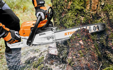 Chainsaws and pole pruners