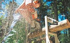 Scier le bois de chauffage facilement et en sécurité