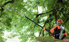 Motopodas para conservação e jardinagem profissional
