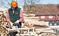 Motoseghe per il taglio di legna da ardere e la cura del verde.