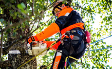 Ligne ADVANCE X-TREEm STIHL