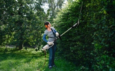 Electric Long-reach Hedge Trimmers