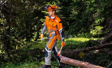 STIHL FUNCTION series