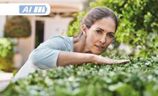 Ideais para tratar de pequenos jardins com todo o conforto